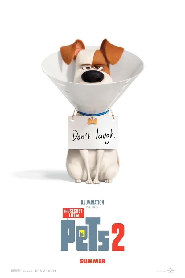 THE SECRET LIFE OF PET 2 Movie Poster