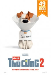 THE SECRET LIFE OF PET 2 Movie Poster