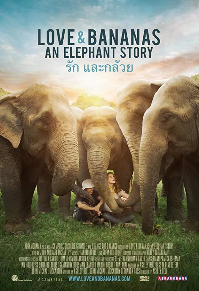 Love And Bananas: An Elephant Story Movie Poster